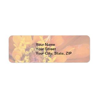 Macro of an orange Zinnia Flower Label
