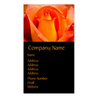 Macro Orange and Yellow Rose Double-Sided Standard Business Cards (Pack Of 100)