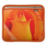 Macro Orange and Yellow Rose iPad Sleeves