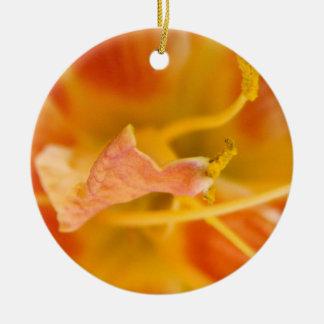 Macro Ornament