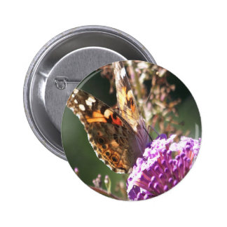 Macro Painted Lady Pinback Button