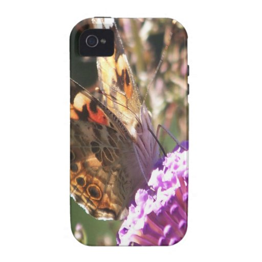 Macro Painted Lady Vibe iPhone 4 Cases