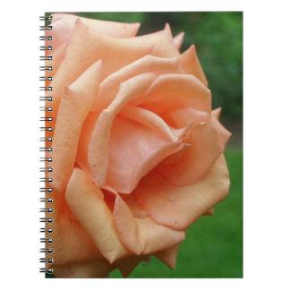 Macro Peach Rose Flower Nature Spiral Notebook