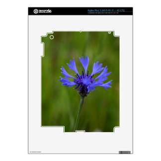 Macro photo of a cornflower (Centaurea cyanus) iPad 3 Decal