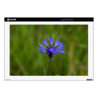 Macro photo of a cornflower (Centaurea cyanus) Laptop Decals