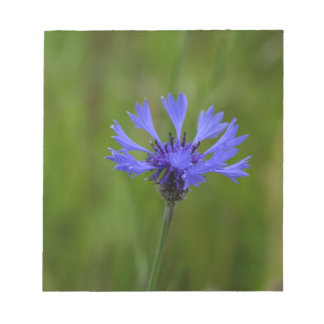 Macro photo of a cornflower (Centaurea cyanus) Notepad