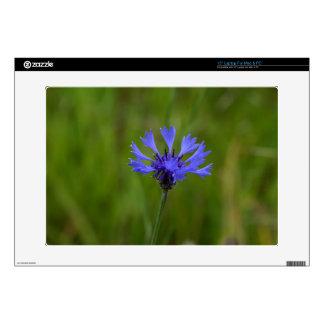 "Macro photo of a cornflower (Centaurea cyanus) Skin For 15"" Laptop"