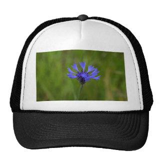 Macro photo of a cornflower (Centaurea cyanus) Trucker Hat
