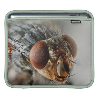 Macro photo of a fly sleeve for iPads