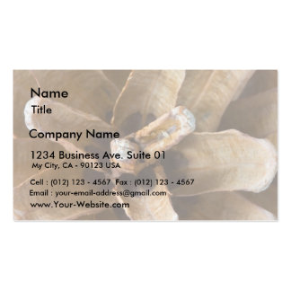 Macro Photo Of A Pine Cone Business Card Template