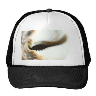 Macro Photo Of A Seashell Trucker Hat