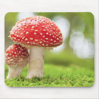 Macro Photo Of Amanita Muscaria In Forest Mouse Pad