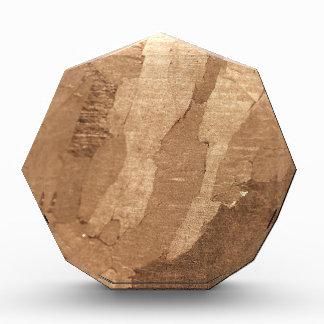 Macro photo of an iron meteorite acrylic award