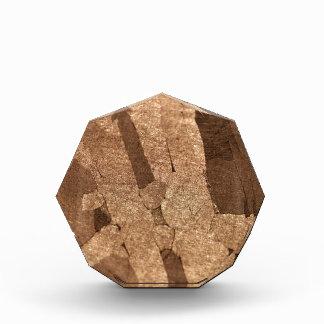 Macro photo of an iron meteorite award