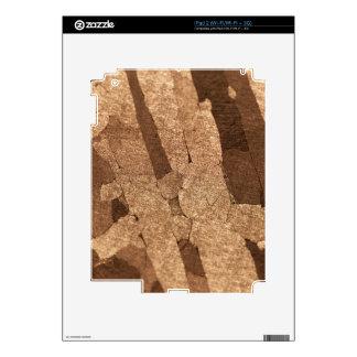Macro photo of an iron meteorite skin for the iPad 2