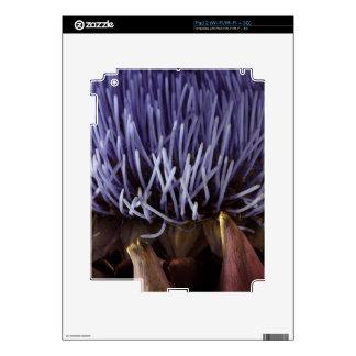 Macro photo of blue artichoke flower leaves. iPad 2 skin