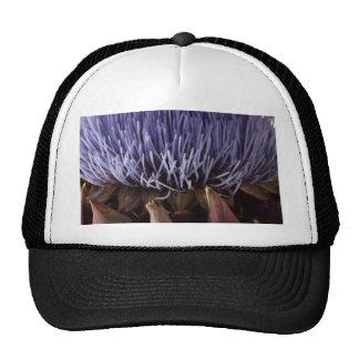 Macro photo of blue artichoke flower leaves. trucker hat