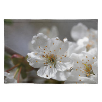 macro photo of cherry flowers cloth placemat