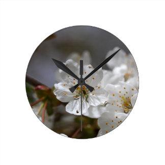 macro photo of cherry flowers round clock