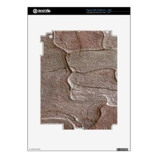 Macro photo of pine bark decal for iPad 2