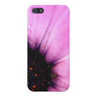 Macro Photo Pink Flower With Bug iPhone 4 Case