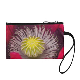 Macro Pink and Purple Poppy Flower Coin Purse