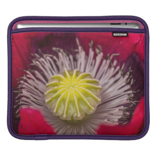 Macro Pink and Purple Poppy Flower Sleeve For iPads