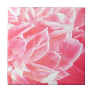 Macro pink flower petals ceramic tile