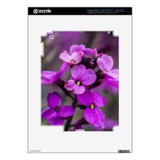 Macro Pink Flowers Square Photo iPad 3 Skin