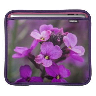 Macro Pink Flowers Square Photo Sleeve For iPads