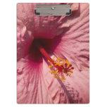 Macro Pink Hibiscus Flower Clipboard
