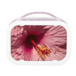 Macro Pink Hibiscus Flower Yubo Lunch Boxes