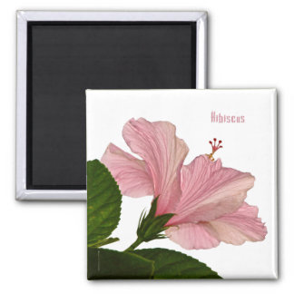 Macro Pink Hibiscus Photograph Magnent 2 Inch Square Magnet