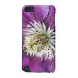 Macro Purple Clematis Flower