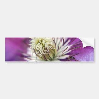 Macro Purple Clematis Flower Bumper Sticker