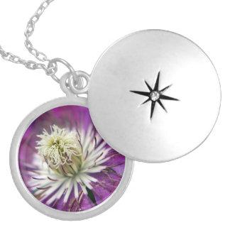 Macro Purple Clematis Flower Round Locket Necklace