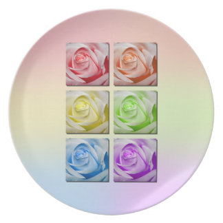 Macro Rainbow Roses Plate