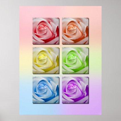 Macro Rainbow Roses Print