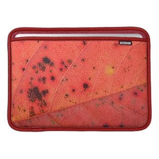 Macro roja de la hoja fundas MacBook