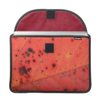 Macro roja de la hoja fundas para macbooks