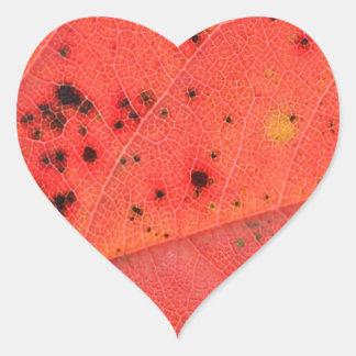 Macro roja de la hoja calcomanía de corazón personalizadas