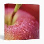 Macro roja de la manzana