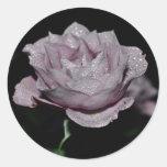 Macro Rose-014 Etiqueta