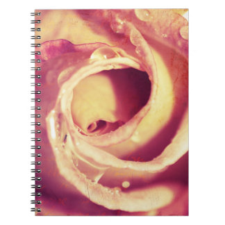 Macro rose notebook