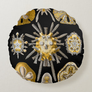 Macro Sea Creatures ~ Sea Urchins Cushions