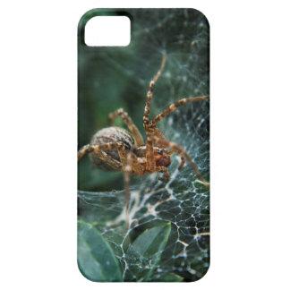 Macro Spider iPhone 5 Cover