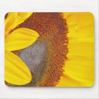 Macro Sunflower Mousepad