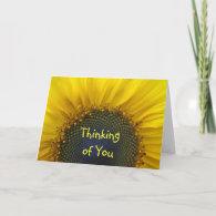 Macro Sunflower Thinking of you Card