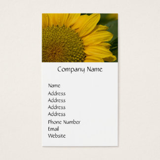 Macro Sunflower With Raindrops Business Card