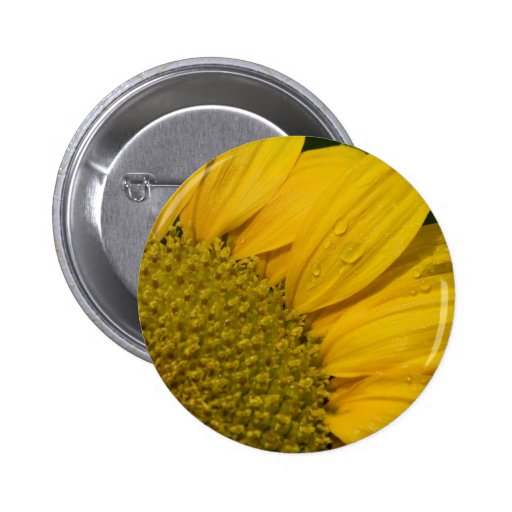 Macro Sunflower With Raindrops Button